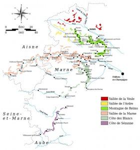 Vignoble de la région d'Epernay