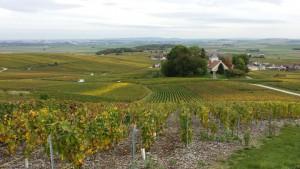 Village d'Ecueil - Montagne de Reims