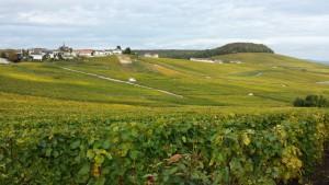 Village de Cramant - Côte des Blancs