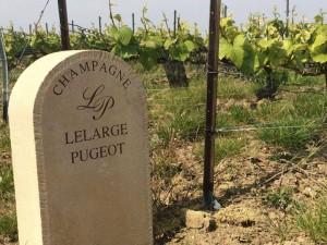 Vignes Lelarge-Pugeot